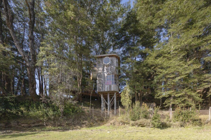 tiny wood cabin on stilts in a forest