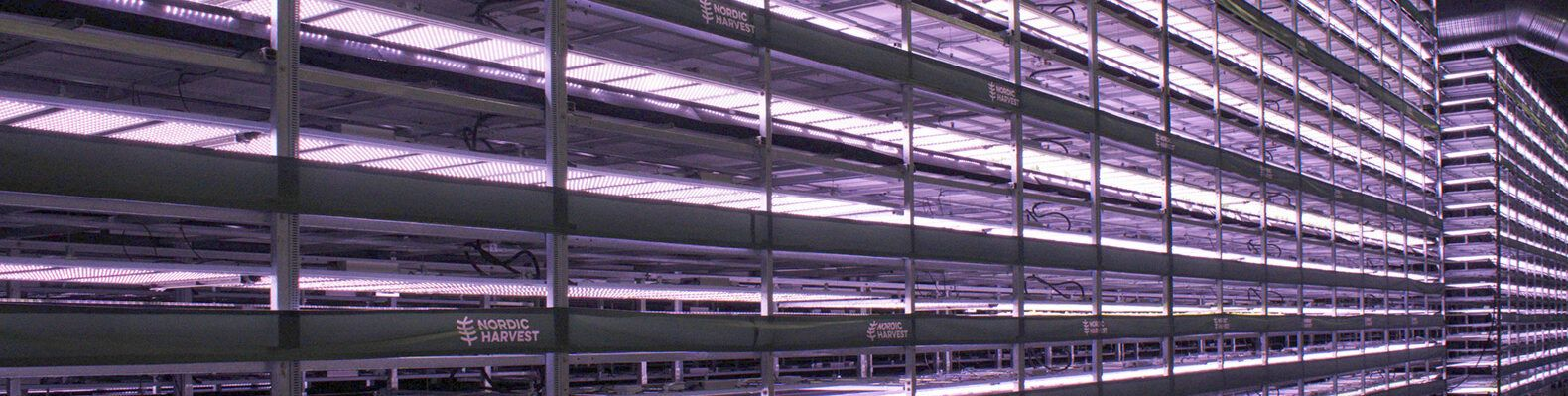 rows of a vertical farm structure