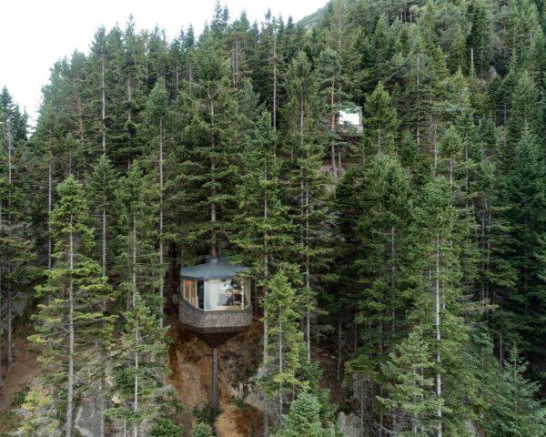 two timber and glass treehouses in a forest