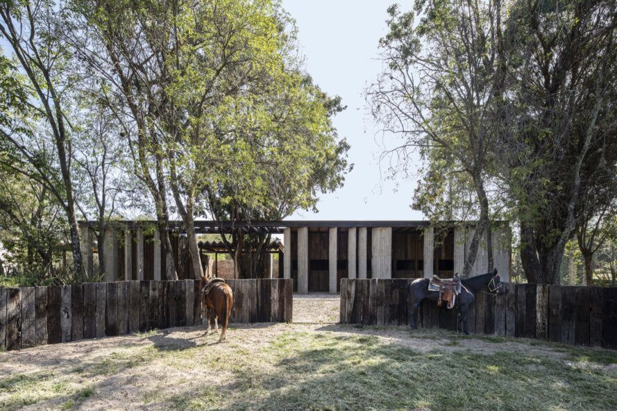 horses near wood, steel and glass home