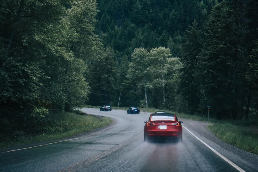 three Teslas driving down a road flanked by trees