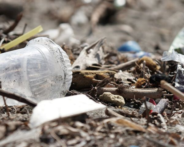 plastic waste on a beach in Bali