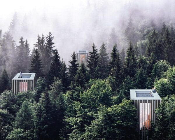 rendering of tall narrow wood cabins with rooftop pools in a misty forest