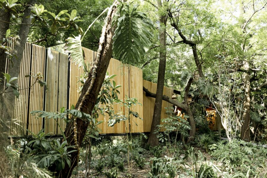 volumes of wood home in a forest