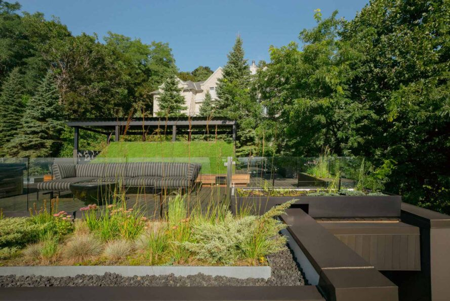 lush green roof on black home