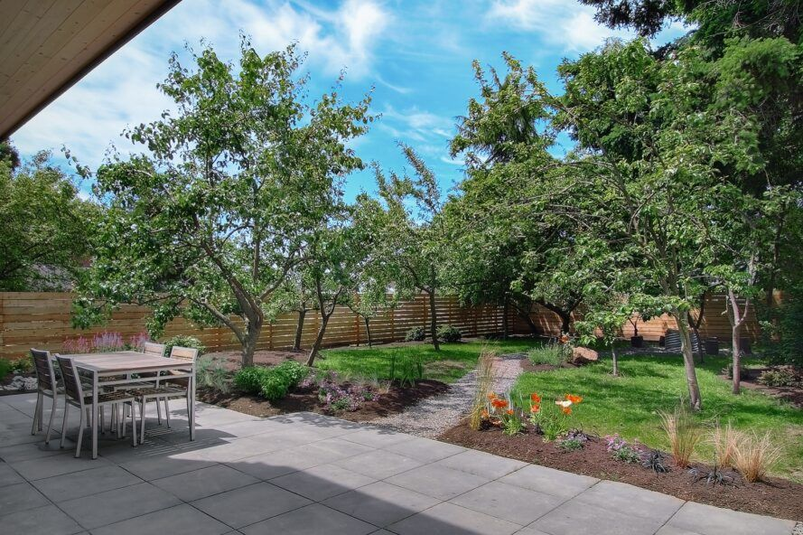 A lush green backyard with concrete patio and path.