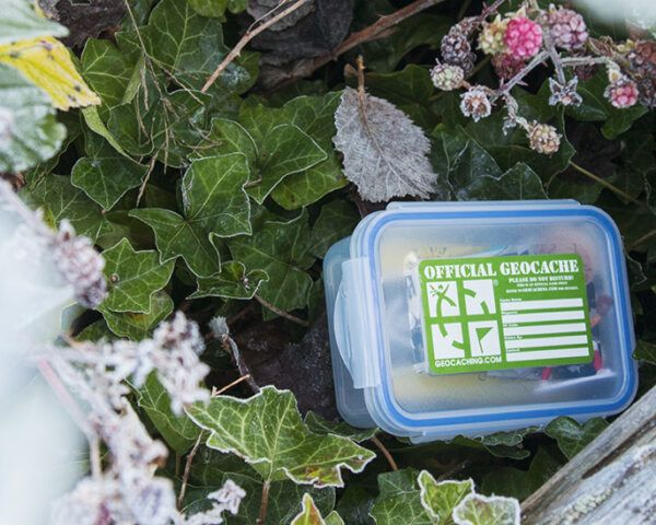 geocache container in frozen landscape of leaves and berries