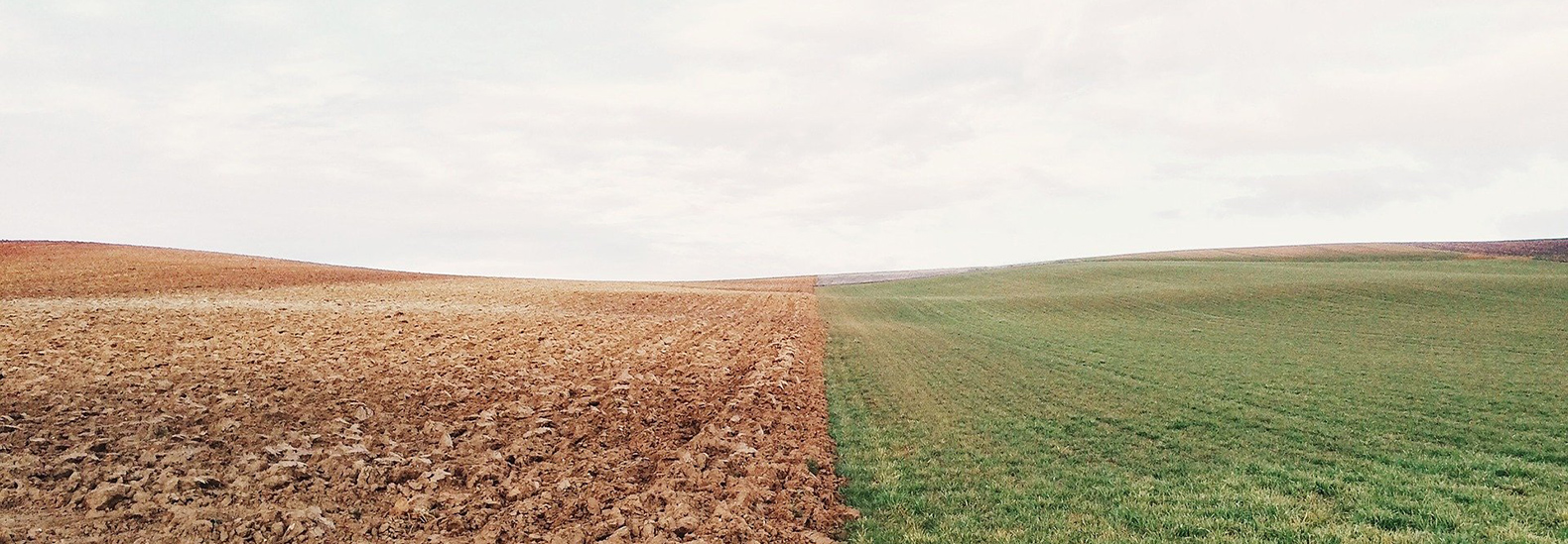 Topsoil is disappearing from Midwest farms | Tech News