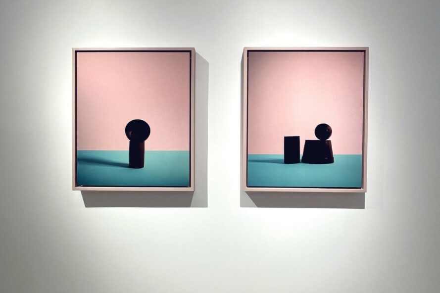 art with still-life objects on pink and blue backgrounds