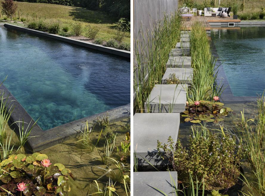 Two images. To the left, a close-up of the greenery surrounding the natural pool. To the right, a stone pathway through the water.