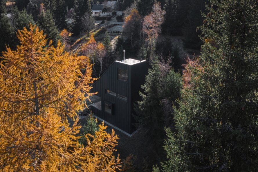 tall black chalet in forest
