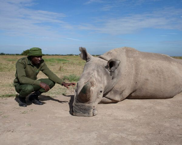 James Mwenda with White Rhino