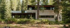 trees surrounding concrete, wood and steel home