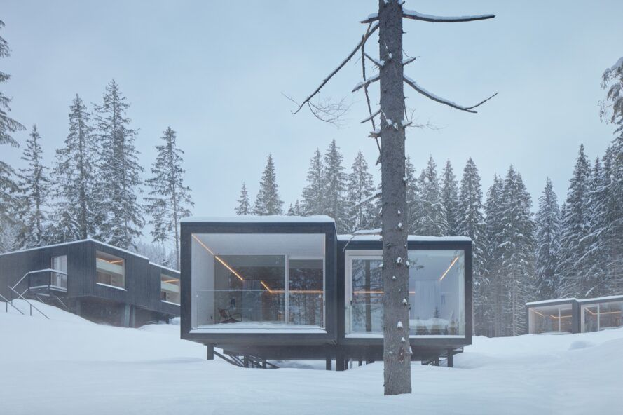 A large tree partially obscures the exterior of a rectangular cabin with glass walls.