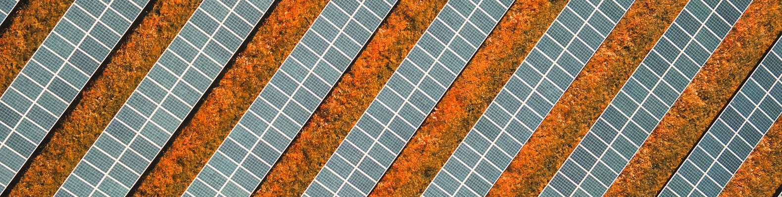 rows of solar panels in a desert