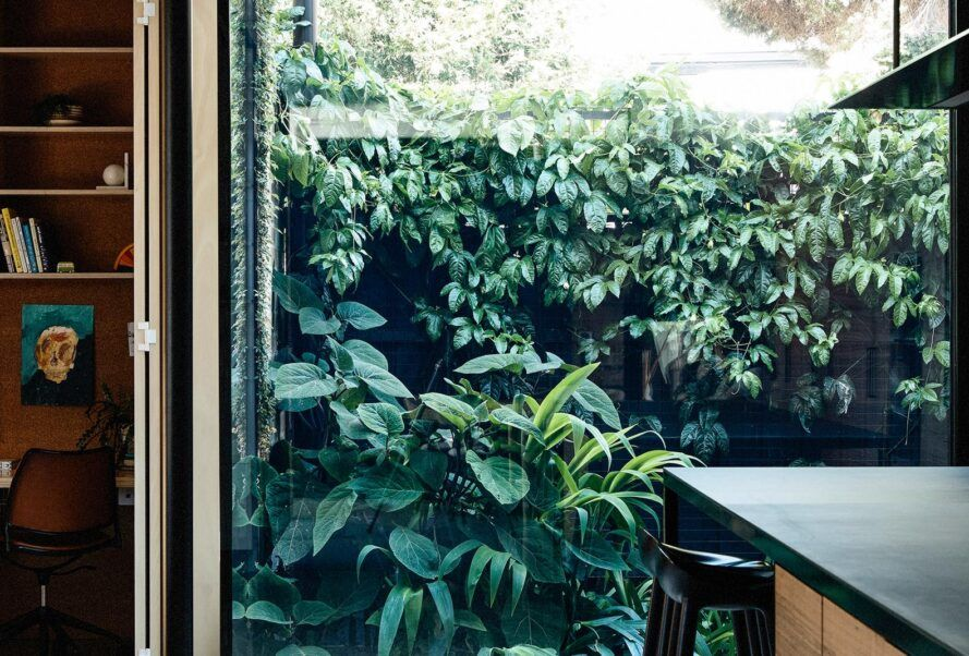 A large indoor window can see the lush garden.