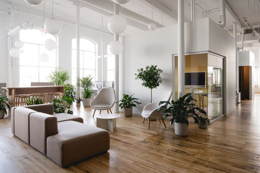 white office lobby with dark gray sofa and several plants