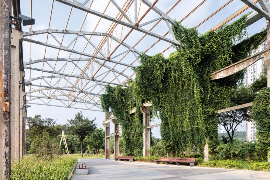 Glass pergola for plant growth on both sides