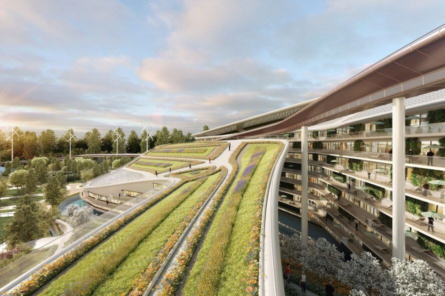 A green roof terrace, with a multi-level building to its right.