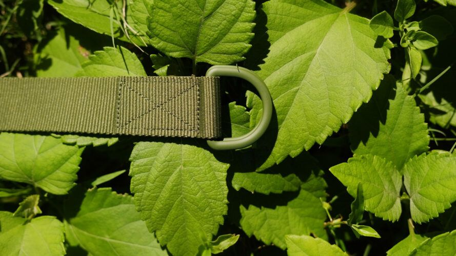 Green utility belt on a bunch of green leaves