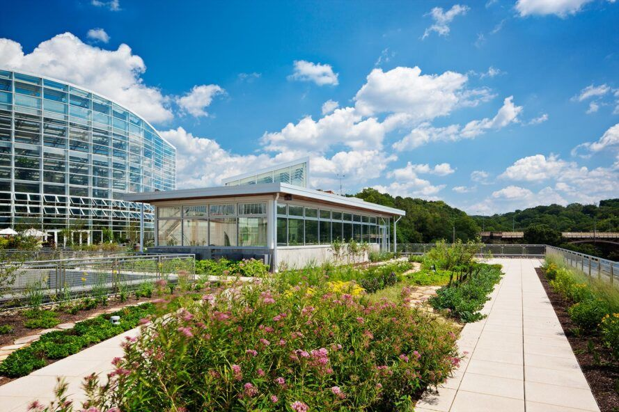 Native plants in front of the glass greenhouse building