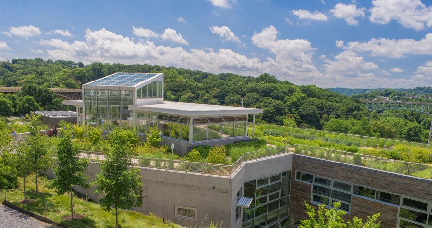 Building roof covered by plants and solar panels