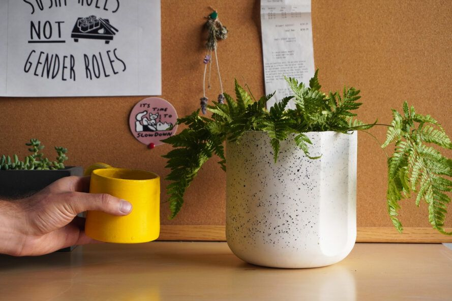 A plant inside a black and white speckled pot. To the left, a hand is holding a small yellow mug.