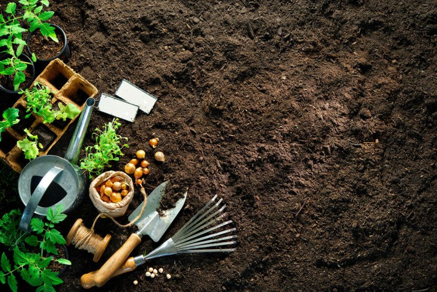 Gardening tools on the soil