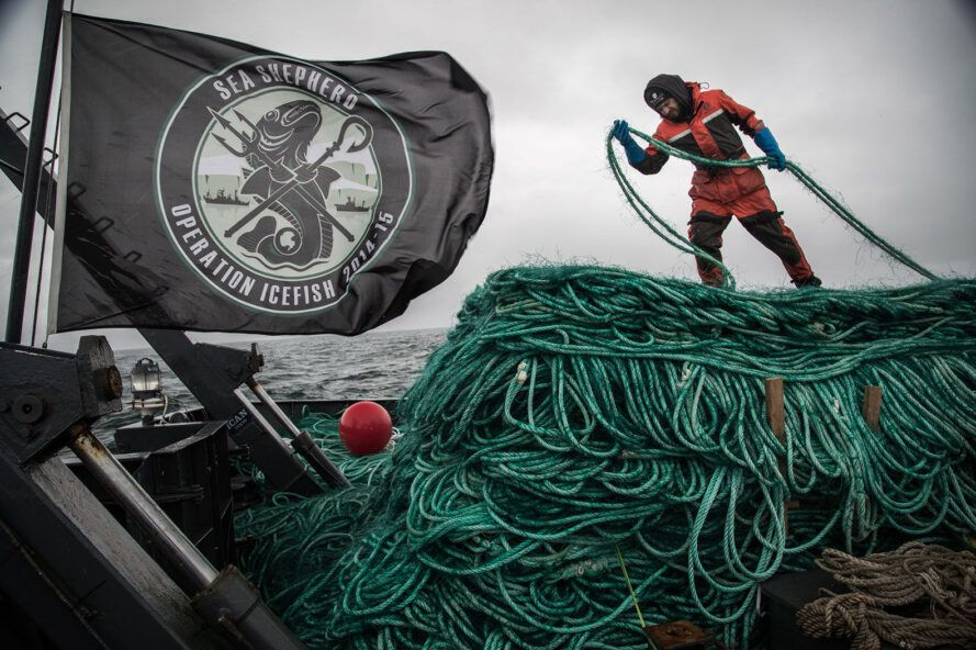 A person standing on a pile of green rope to the right of a black flag.