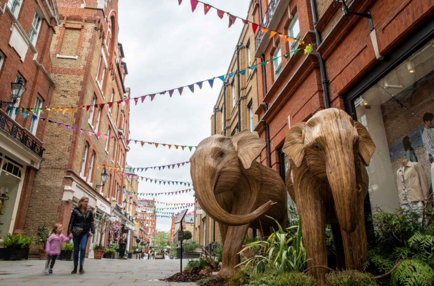 Two elephants on display in the streets of London