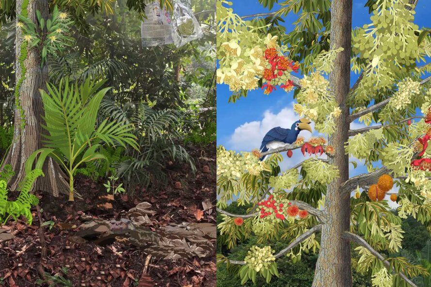 Computer generated images of plants, trees and birds.