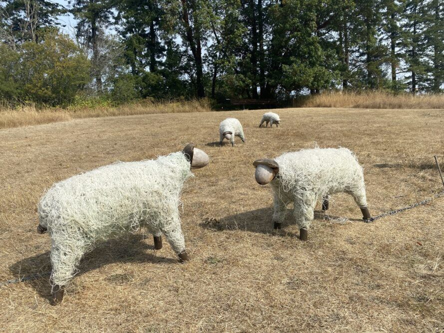 Sheep sculptures made out of old fishing nets.