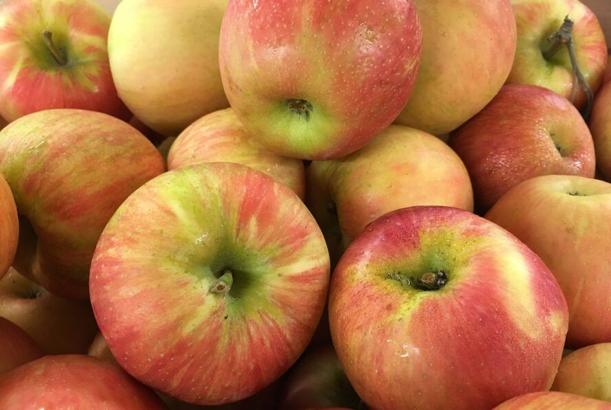 A pile of red-yellow apples.