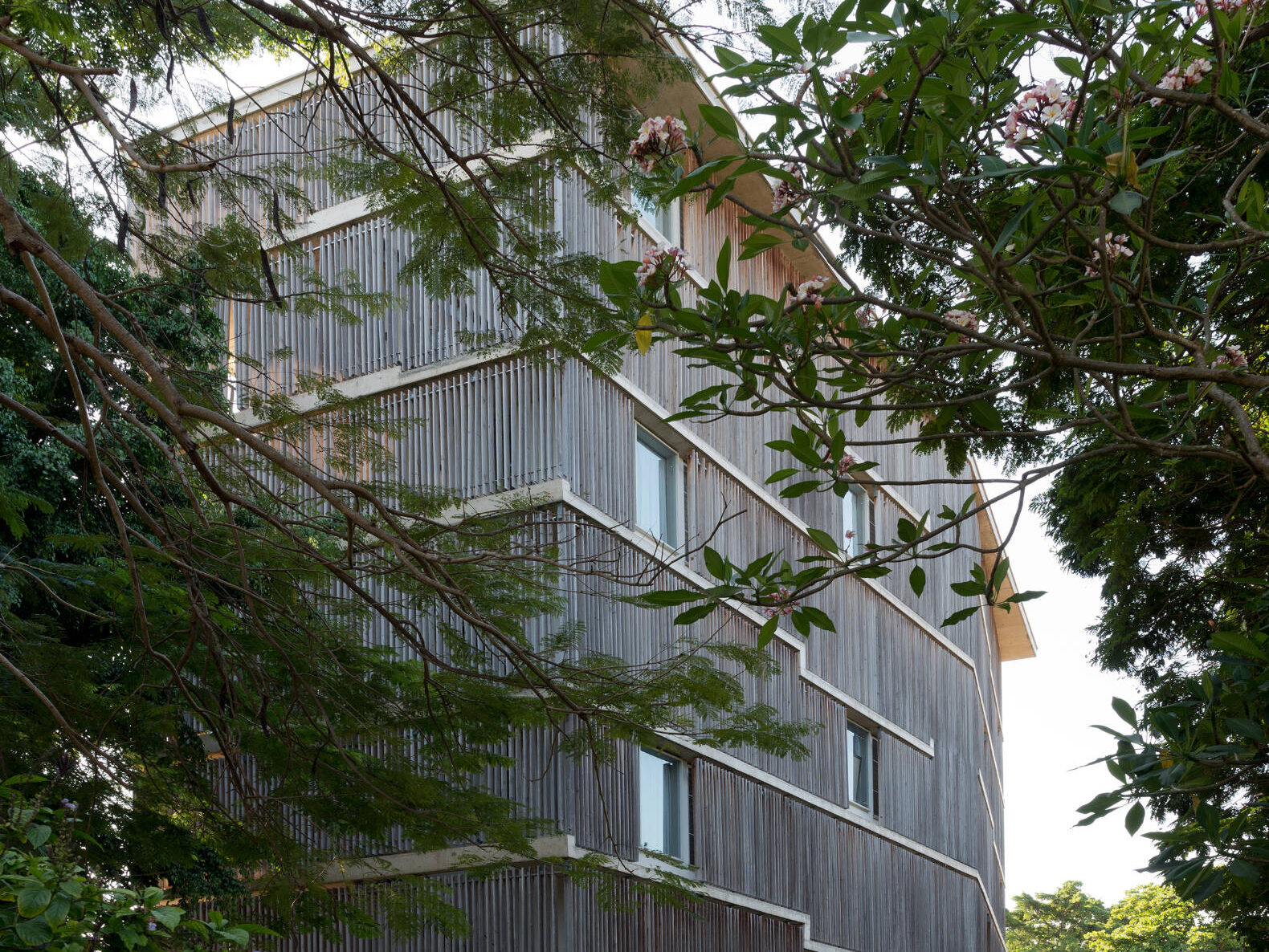 Side view of apartment block covered in wood slats shaded by trees