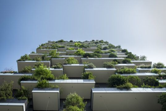 Vertima's environmental consulting helps businesses go green