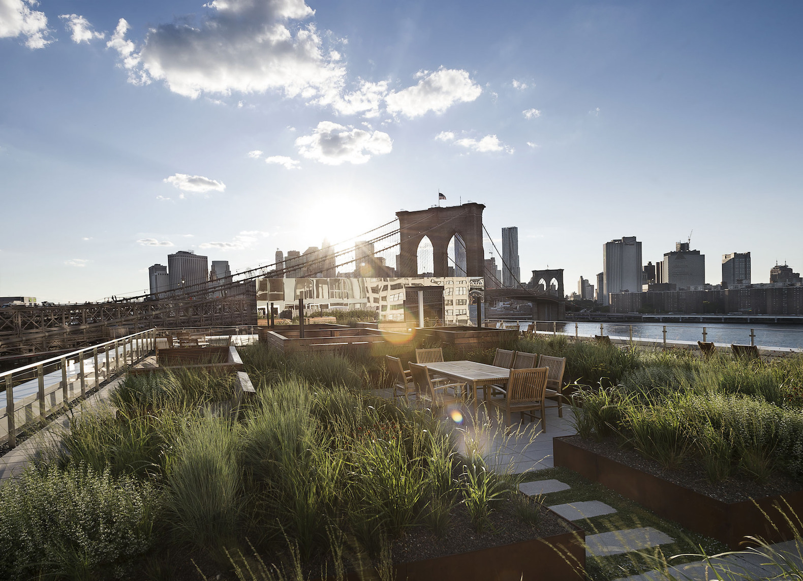 Landscape architect behind the High Line designs a breathtaking rooftop garden in Brooklyn