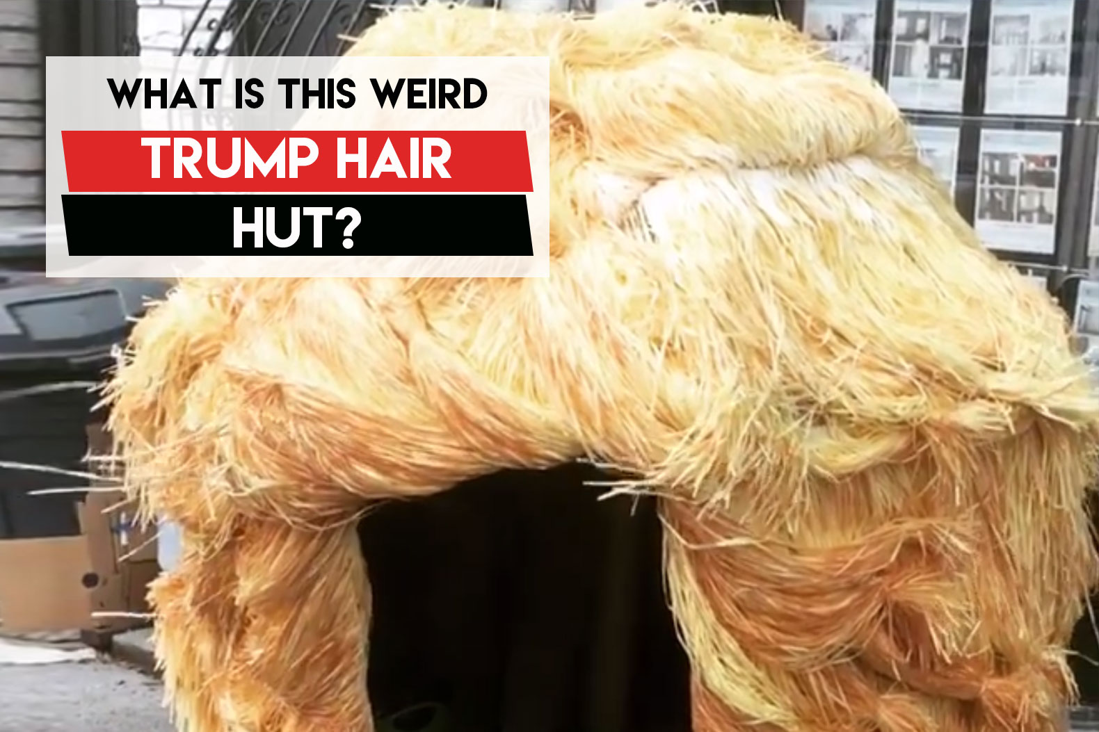 Disturbing 'Trump Hair Hut' spotted on the streets of Red Hook