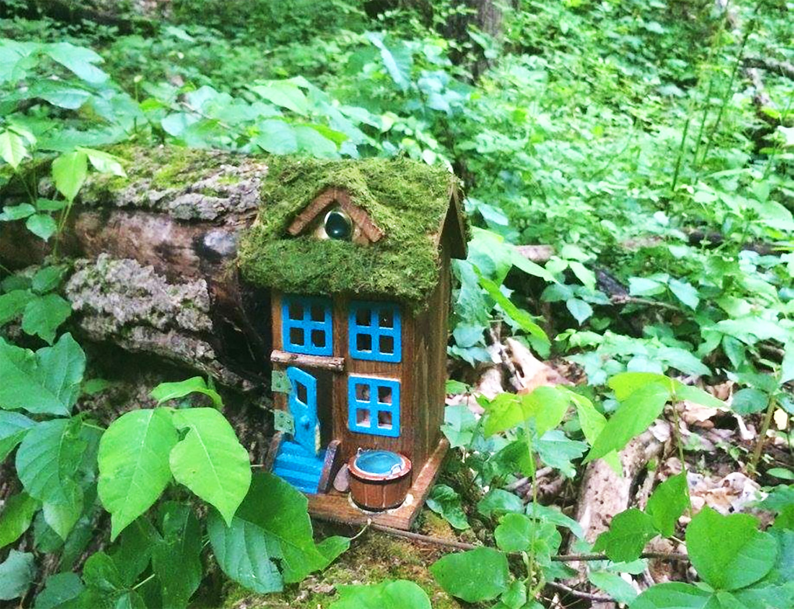 Mysterious itty bitty fairy houses line this NJ hiking trail