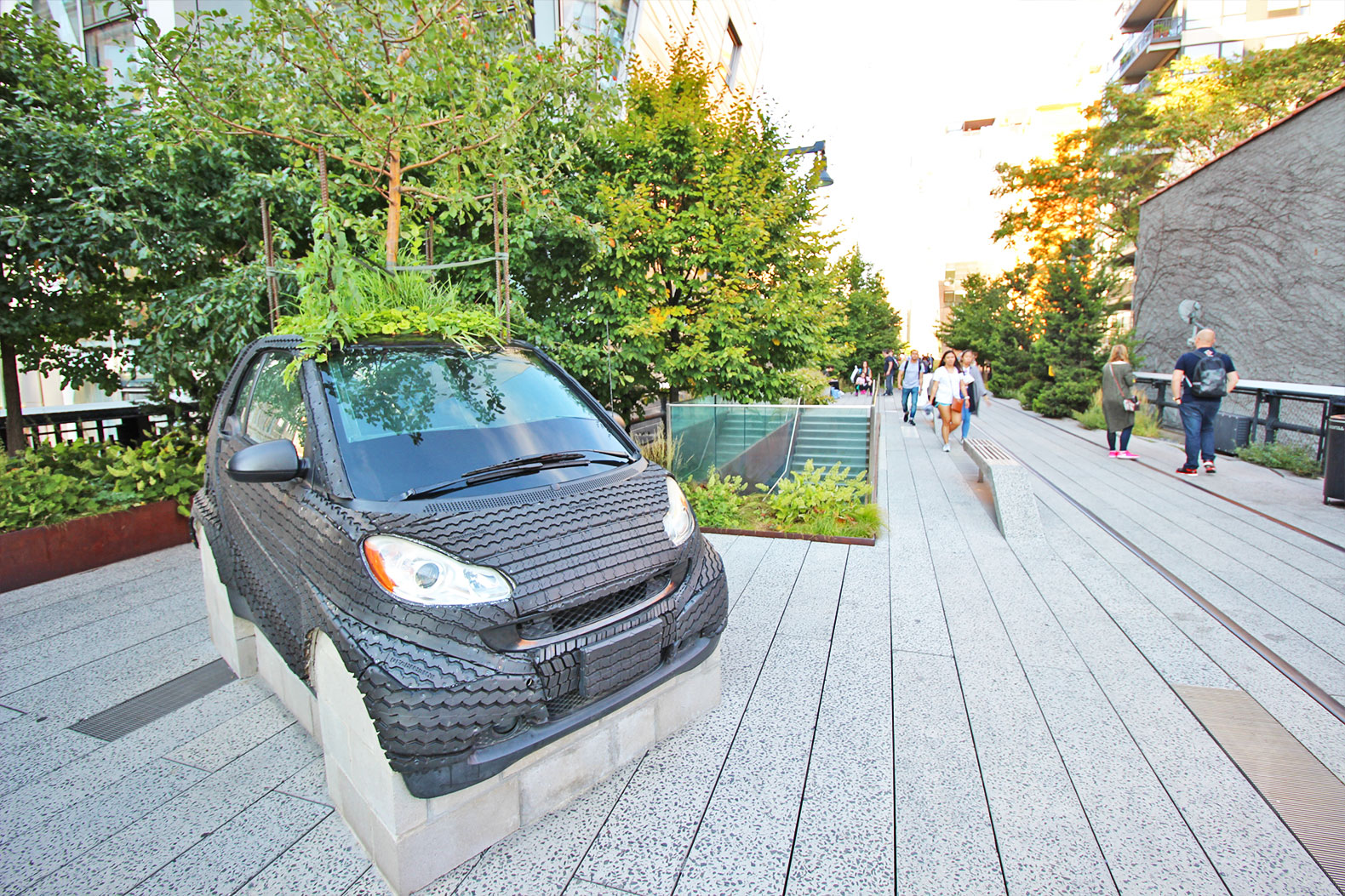What's the deal with this apple tree growing out of a car on the High Line?