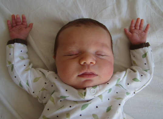 The Great Sleep Debate, Jill Petey, Co-sleeper, Arm's reach Cosleeper, Dr. Sears, Attachment Parenting, Sleeping through the night