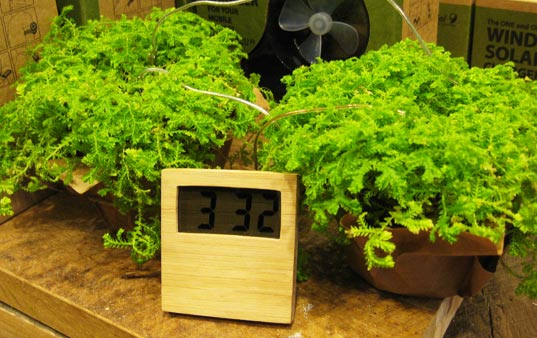 soil clock, dirt powered clock, dirt clock, bamboo clock, plant clock, marieke staps