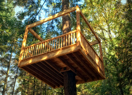 elevated living's eco-friendly tree homes take outdoor play to new