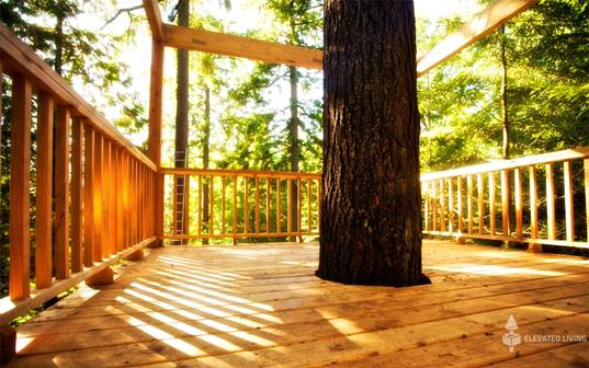 Elevated Living, Tree Home, Tree House, Treehouse, Treehouses, Tree House  For