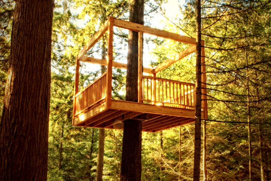 elevated living, tree home, tree house, treehouse, treehouses, tree house for grownups, fancy tree house, amazing tree house, tree homes, eco-friendly tree house, LEED tree house, leed