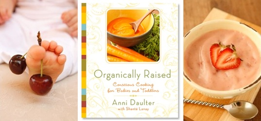 Green book review organically raised conscious cooking for babies baby feeding forumfinder Choice Image