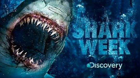 Shark Week, Discovery Channel, 5 Green-Themed TV Shows For Kids, The Hub, Kids Tv, Kids Television, green kids programming, eco television, eco television programming, green programming, green TV, eco TV, green television, eco television, environmental television, kids television, children's television, kids programs, kids programming