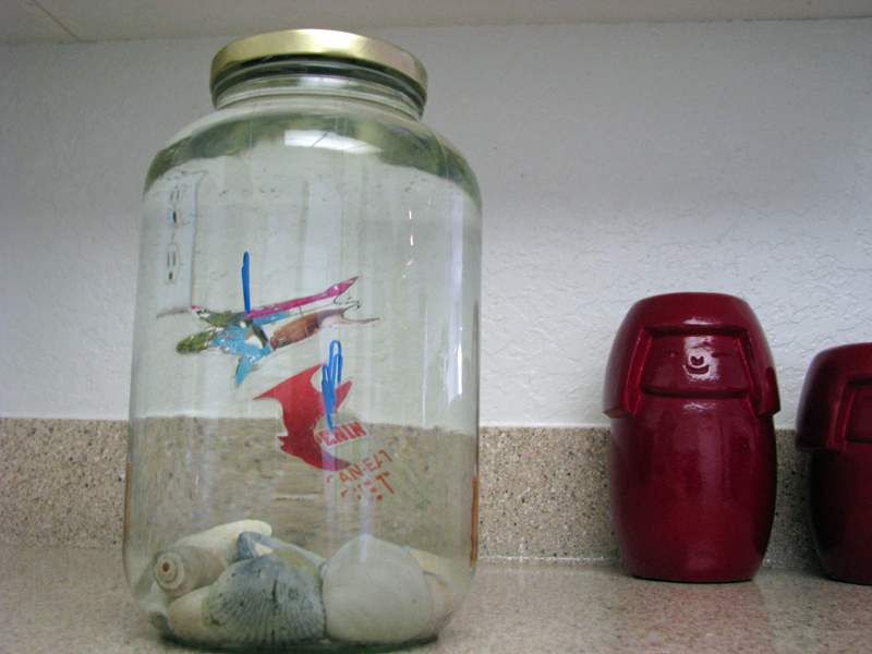 How To Make A Recycled Fish Tank For Faux Pets