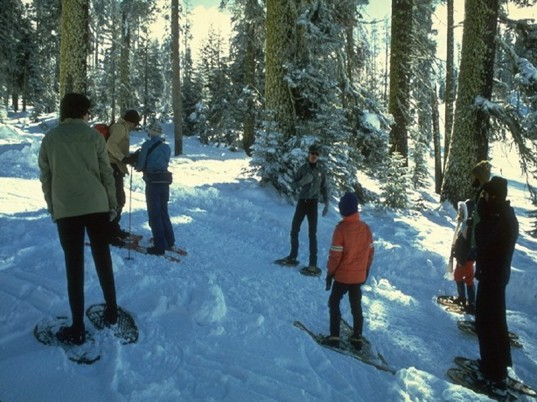 eco kids, green kids, eco baby, green baby, how to, snowshoeing, jennie lyon, sustainable design for kids, green design