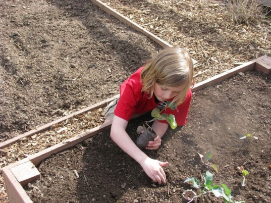eco kids, green kids, eco baby, green baby, green design for kids, diy kids, gardening, how to, jennie lyon, sustainable design for kids