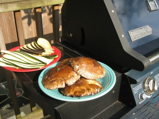 grilling, vegetarian fourth of july